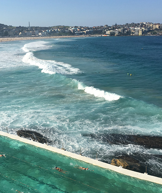 Icebergs Dining Room And Bar, Bondi Beach - Gamble Breaux